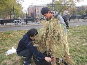 High school students working together to clean up Kissena Park