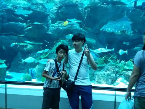 Michael's family took him to the aquarium and anime shops